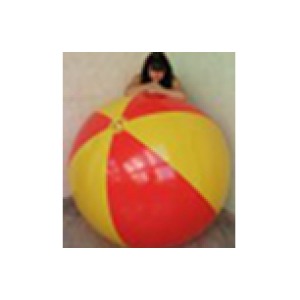 Giant Beach Ball 72yr